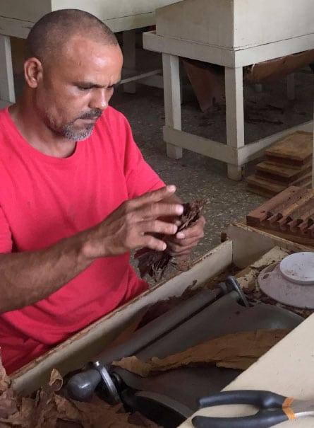 zigarrenrohling zigarren aus der dominikanischen republik - los hermanos luzern